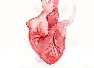 Heart, Brian Murphy