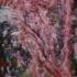 Alightuntothyselfweb