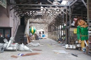 Mardi Gras Warehouse, Jane Fulton Alt