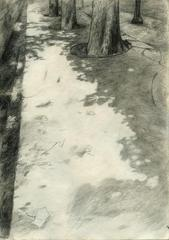 "UNTITLED DRAWING # 16 (SIDEWALK) [From ""THE AC·KNOWL·EDGE·MENT"", a series and publication in progress, STIAN EIDE KLUGE"