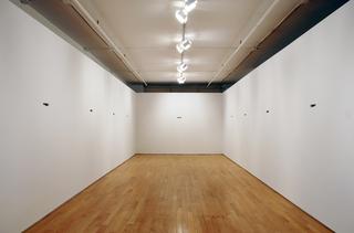 Scotoma (Installation View), Taras Polataiko