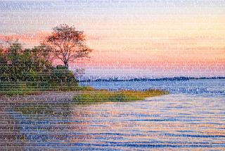 Dead Horse Bay, Stephanie Lempert