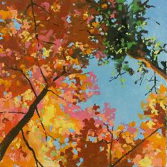 Tree Canopy 2, Richard Kooyman
