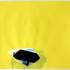 4-yellow_window