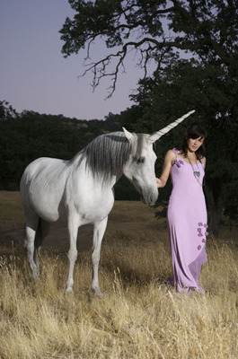 13_unicorn_copy