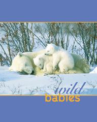 Wild Babies,