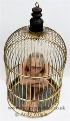 Cage-large