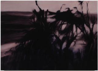 Werner Herzog, Kawait, Hope Atherton