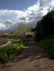 Landscape 1, Michael Cappabianca