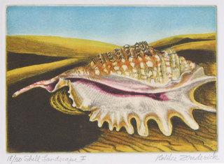 Shell Landscape I, Robilee Frederick