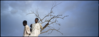 """Darfur"" (Boys and Tree) , Ron Haviv"