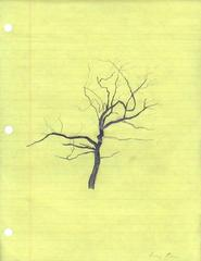 Untitled [Study for Palimpsest Tree], Roxy Paine