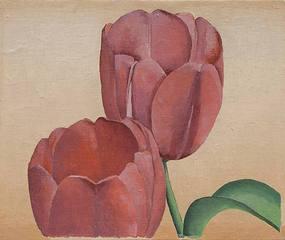 No. 26 Flower Forms (Tulips), Stuart Walker