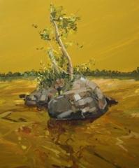 Island II , Claire Sherman