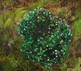Clover II , Claire Sherman