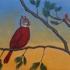 Cardinal-squirrel