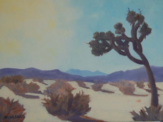 Winter Sun, Mojave, Tina Bluefield