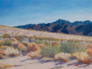 Pinto Mountain and Wash, Tina Bluefield