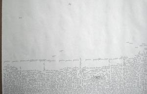 Scripted_landscape_leora_lutz_2009