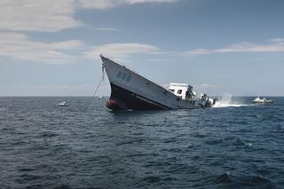 The Sinking of USS Radford, Stephen Mallon