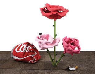 Rose 30,