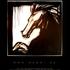 Postcard_black_stallion-1
