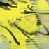 Schiess_mimosas_2003_mischtechnik_auf_leinwand_50x60cm