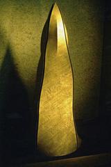 Gravitation, Jyoji Kubo