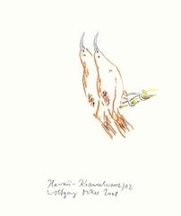 Hawaii-Krausschwanz 12, Wolfgang Müller