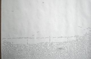 Scripted Landscape, Leora Lutz