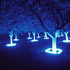 Lightgarden_front_1500px
