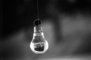 bulb, Samuel Frost