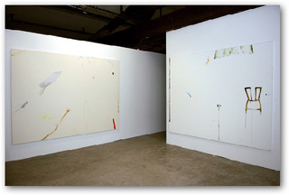 (installation view Balice Hertling), Samuel Richardot