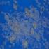 Sacredgrove2_2