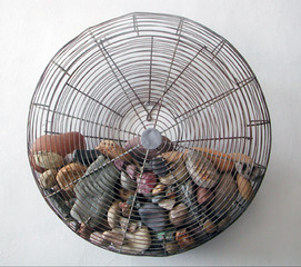 Rock Fan, Gale McCall