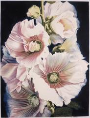 Hollyhocks, Winifred Godfrey