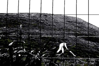 Myth of Sisyphus, Jordan Essoe