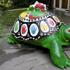 A-turtle-terrapin
