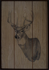 Deer_1 (Semi-Upright Left Turn) , Liz Young
