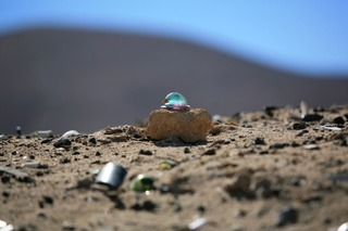 Atacama desert / Chile, JOHN CONLEY