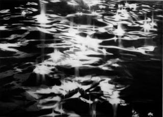 Light Camouflage, Sarah Leahy