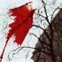 Kari_orvik_-_kite_from_peace_march_january_2003