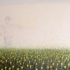 Sanjay_vora_june_field_large