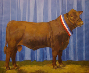 Champion Bull, Jane Fisher