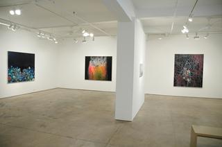 installation, Jennifer Coates