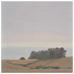 Eucalyptus Grove, Pamela Kendall Schiffer