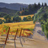 Slanted_hillside_vineyard_22x28_c_2008_milligan