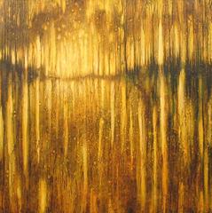 Mangrove Light, Robin Denevan