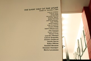 The Dark Side of the Light Opening at Gallery Godo, Suzanne Danziger
