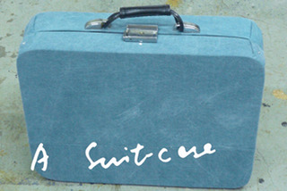 Suitcase,Lee Kit